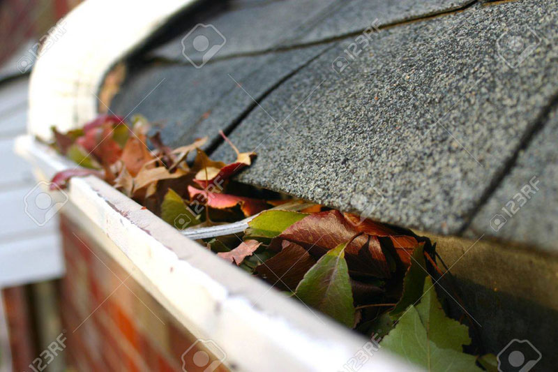 Burnaby BC - Gutter Cleaning